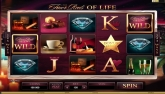 Click Here to Play this FREE Video Slot Flash Game: The Finer Reels of Life...